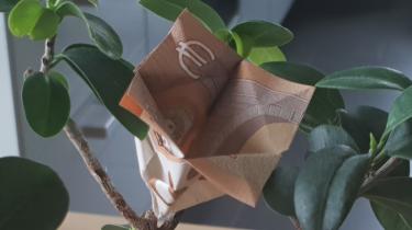 Blume Blüte Aus Einem Geldschein Falten Origami Mit